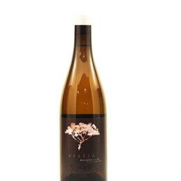 Vi blanc acàcia de suñer, edició limitada, D.O Tarragona